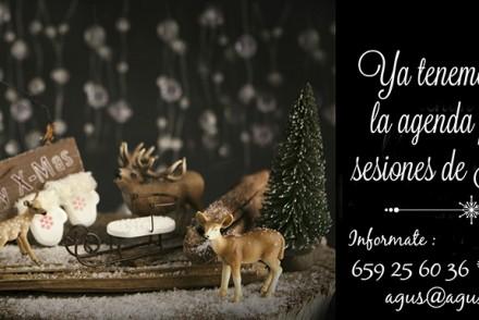 Agenda Nadal2