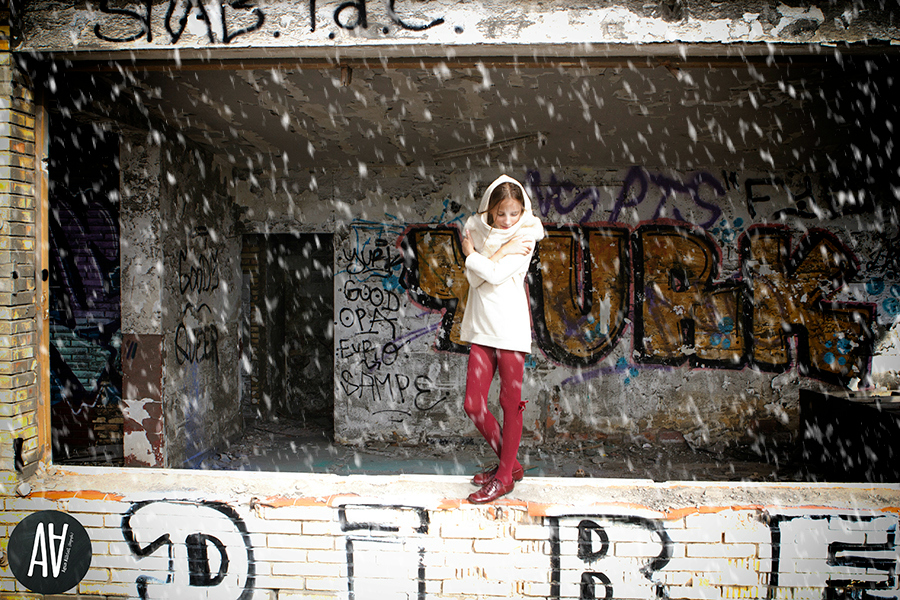 La reina de las nieves.11